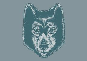 286x200 Wolf Face Free Vector Art