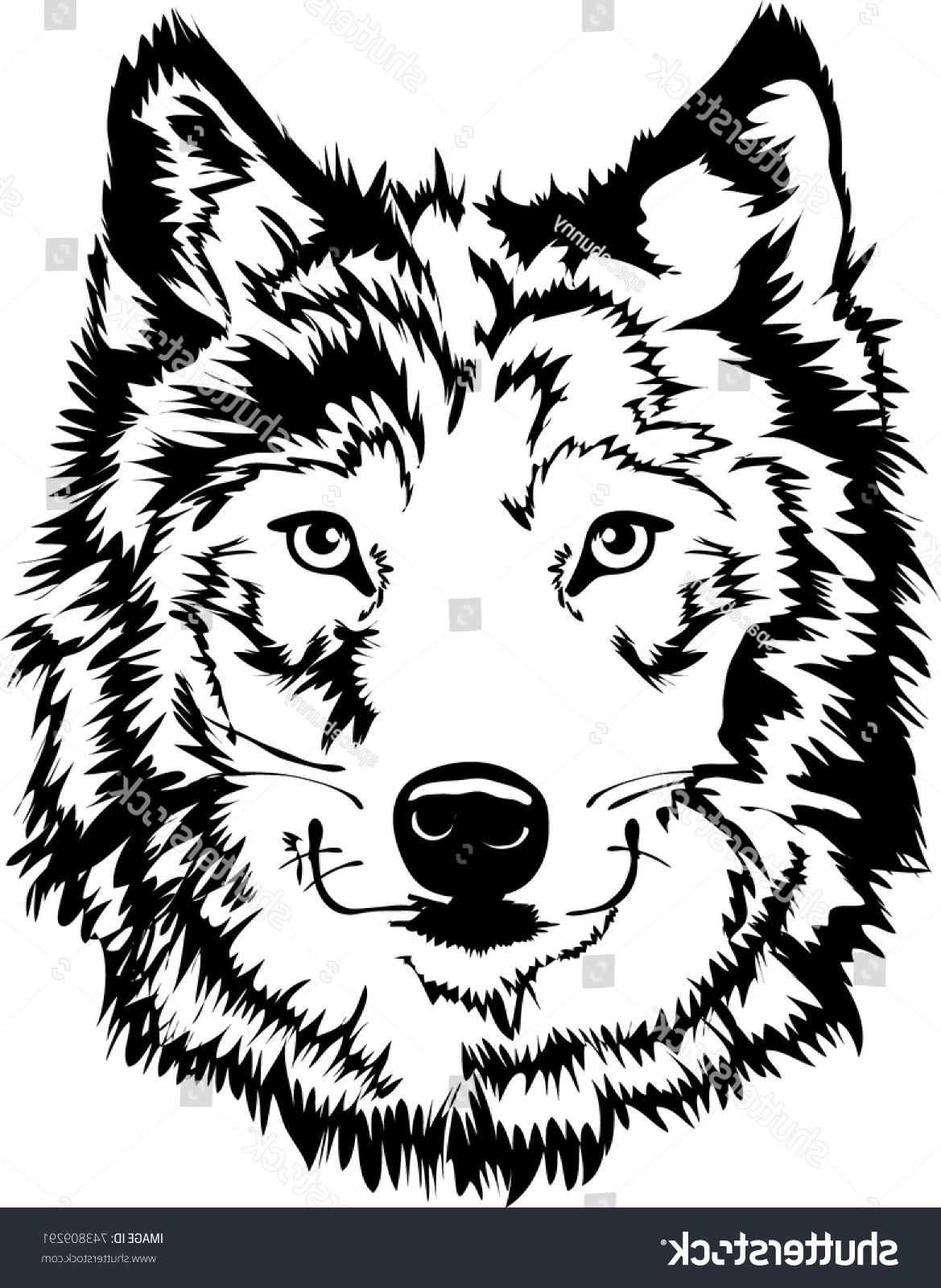 1169x1600 Best Hd Stock Vector Black White Wolf Face Silhouette Mascot Or