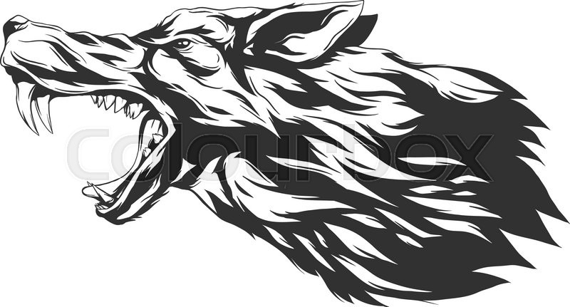 800x431 Angry Wolf Head. Monochromatic Logo For Your T Shirt. Stock