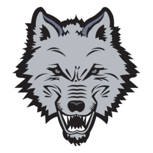 300x300 New England Sea Wolves Logo, Vector Logo Of New England Sea Wolves