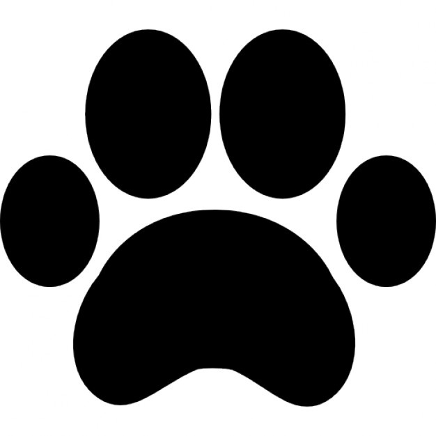 626x626 Paw Vectors, Photos And Psd Files Free Download