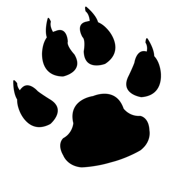 736x736 Paws Clipart Wolf ~ Frames ~ Illustrations ~ Hd Images ~ Photo