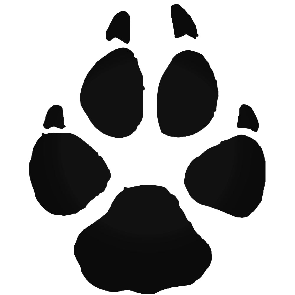 1000x1000 Vector Illustration Wolf Paw Prints Track Icon Black On White