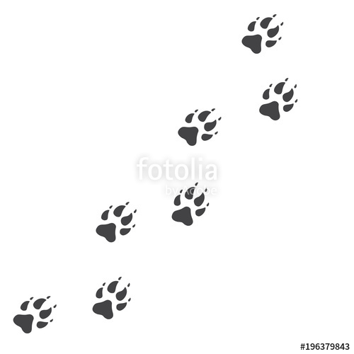 500x500 Vector Illustration. Wolf Paw Prints Track Logo. Black On White