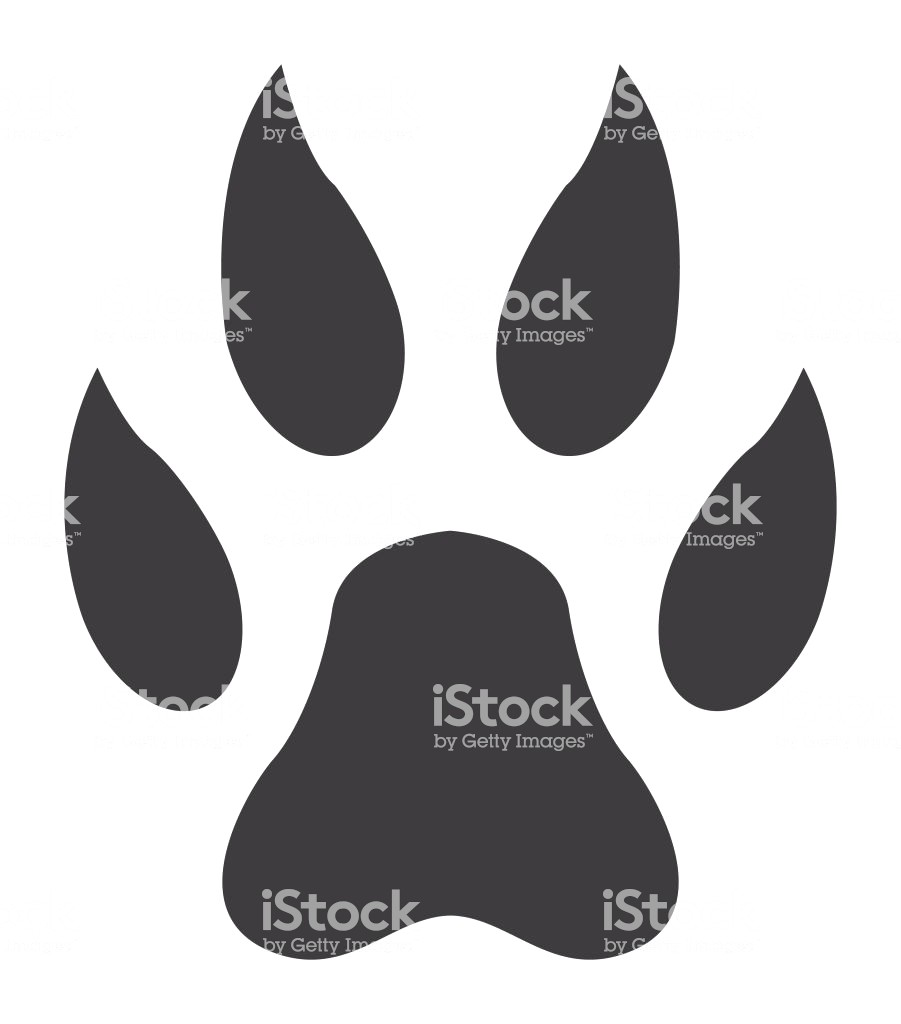 901x1024 Amazing Wolf Paw Print Clip Art Shapes Line Picture Of Lion
