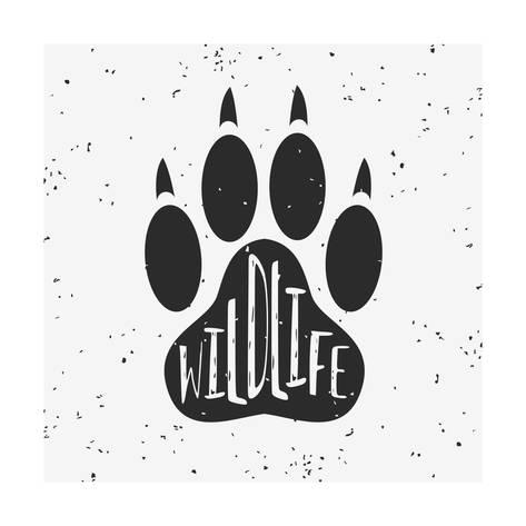473x473 Vector Hand Drawn Typographic Poster With A Wolf Paw. Wildlife