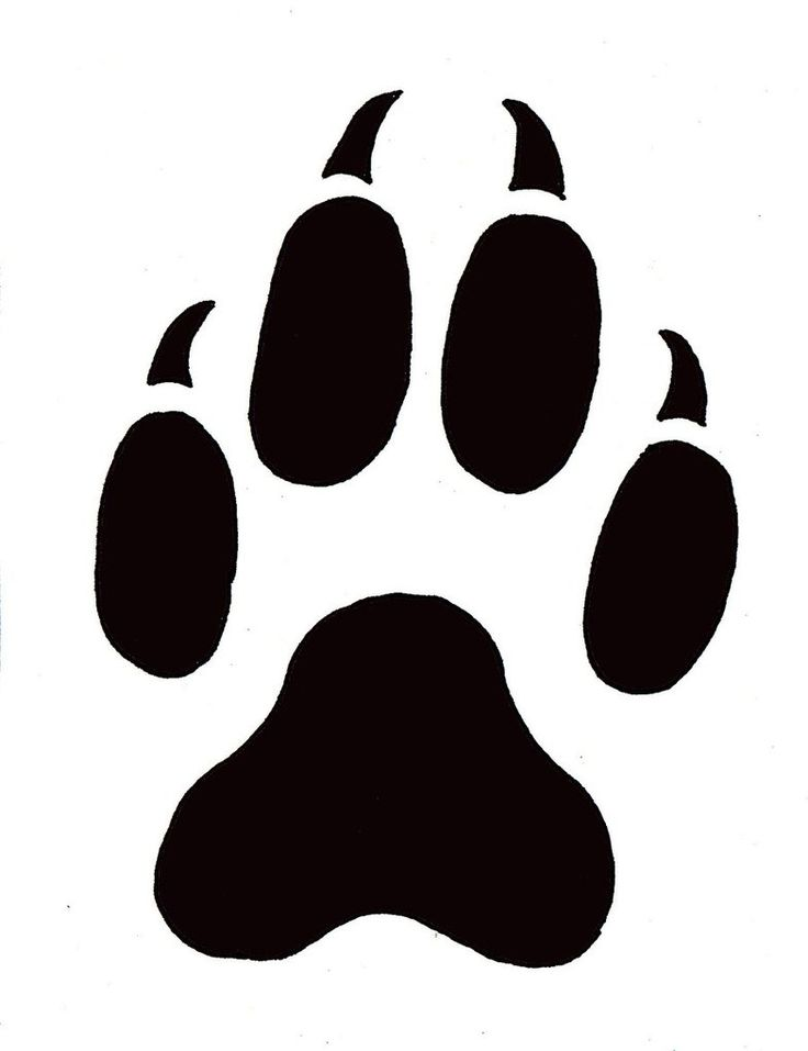736x957 Collection Of Free Clipart Wolf Paw Print High Quality, Free