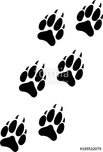 Wolf Paw Vector At Getdrawingscom Free For Personal Use Wolf Paw