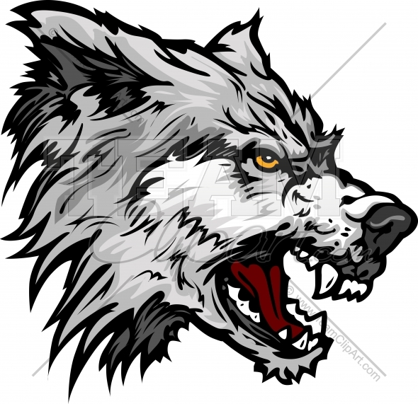 590x571 Wolf Vector Clipart Image. Easy To Edit Vector Format.