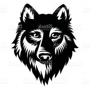300x300 Wolf Vector Illustration Vector Gm Orangiausa