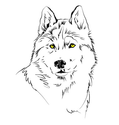 380x400 Wolf Vector 13 An Images Hub
