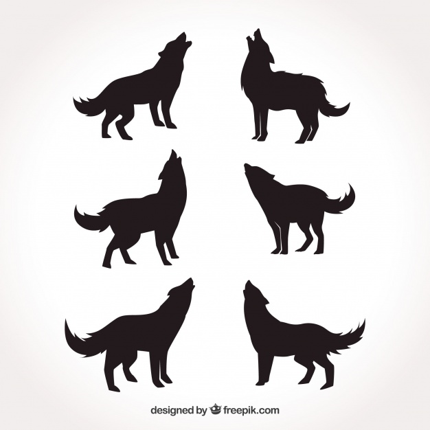 626x626 Various Silhouettes Of Wolves Vector Free Download