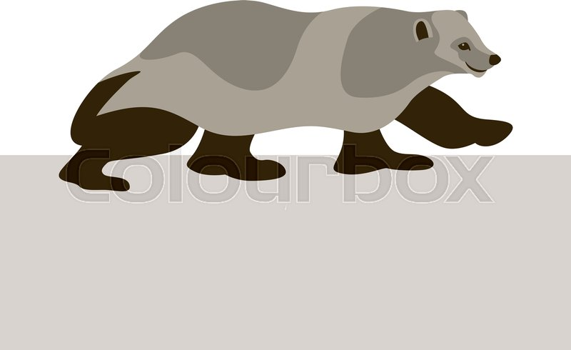 800x490 Wolverine Vector Illustration Style Flat Stock Vector Colourbox