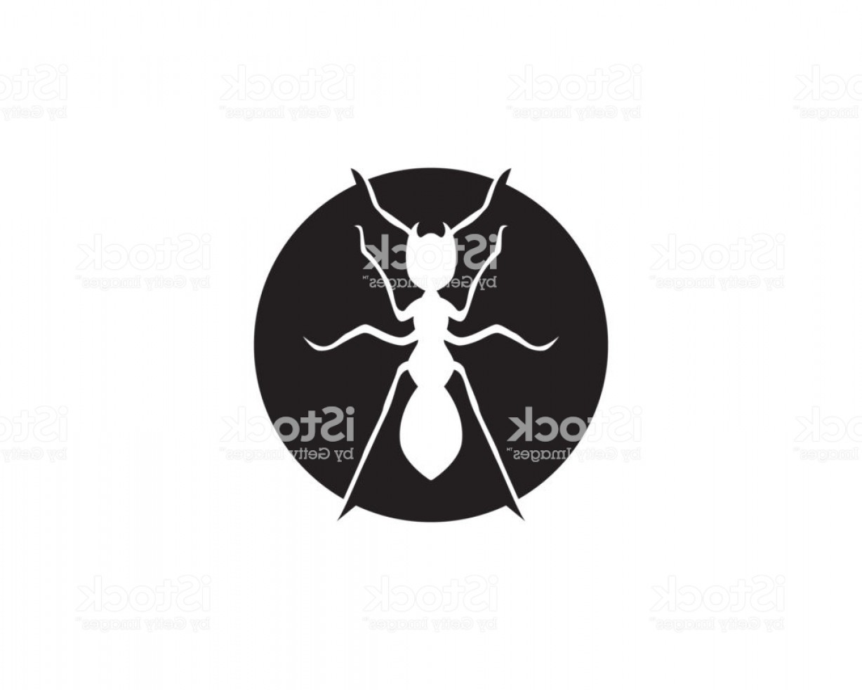 1228x984 Ant Logo Template Vector Illustration Design Gm Lazttweet