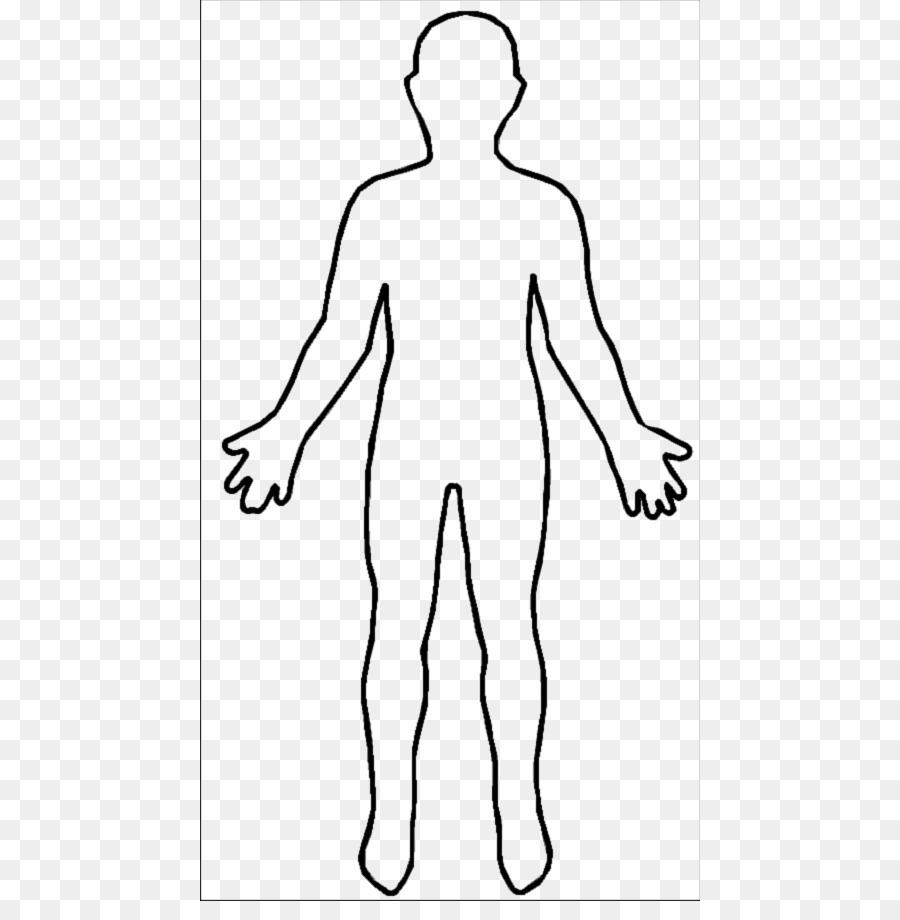 900x920 Organs Clipart Body Shape