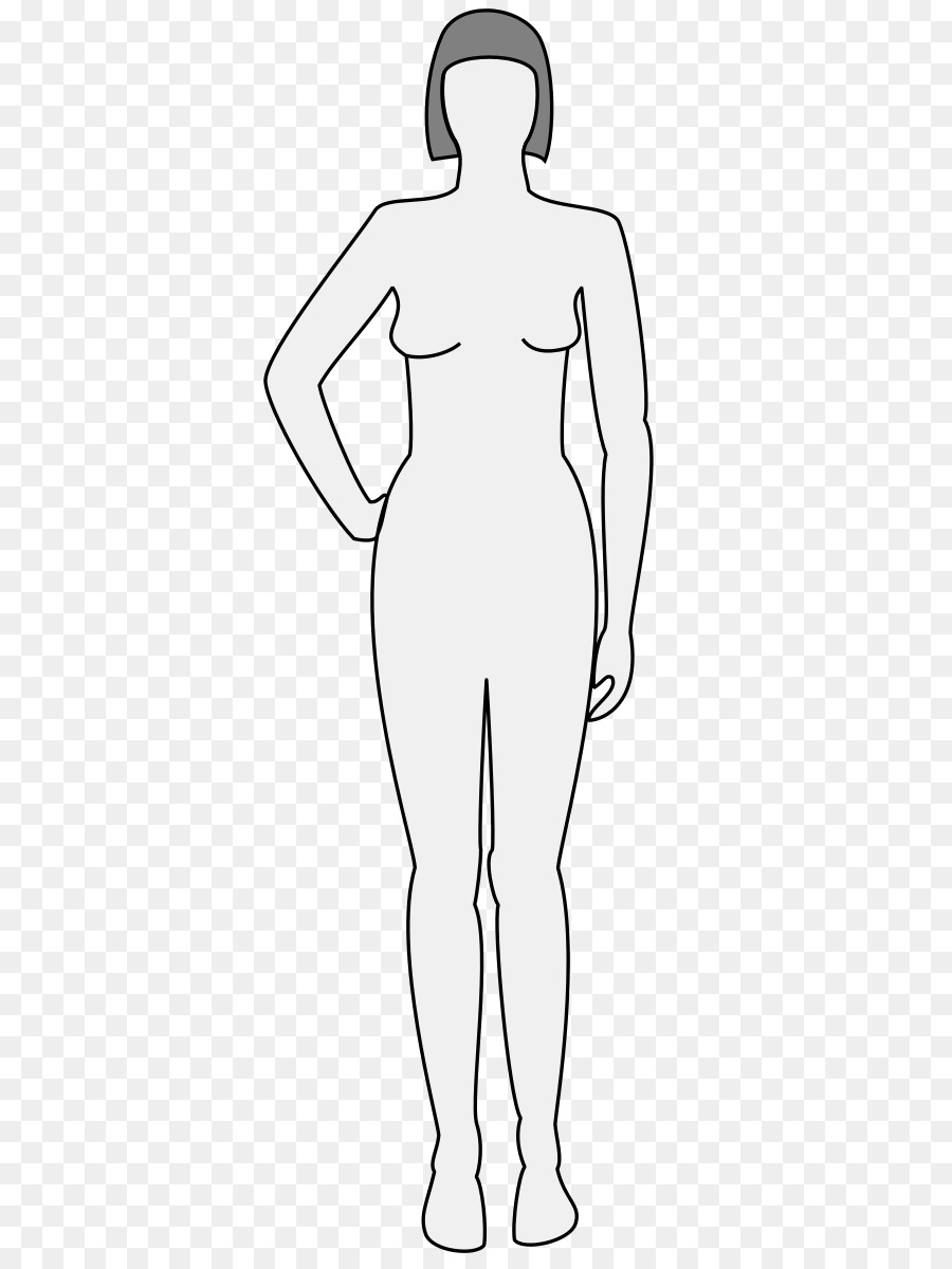 900x1200 Stock Vector Male Body Shapes Human Outline Posterior And Anterior