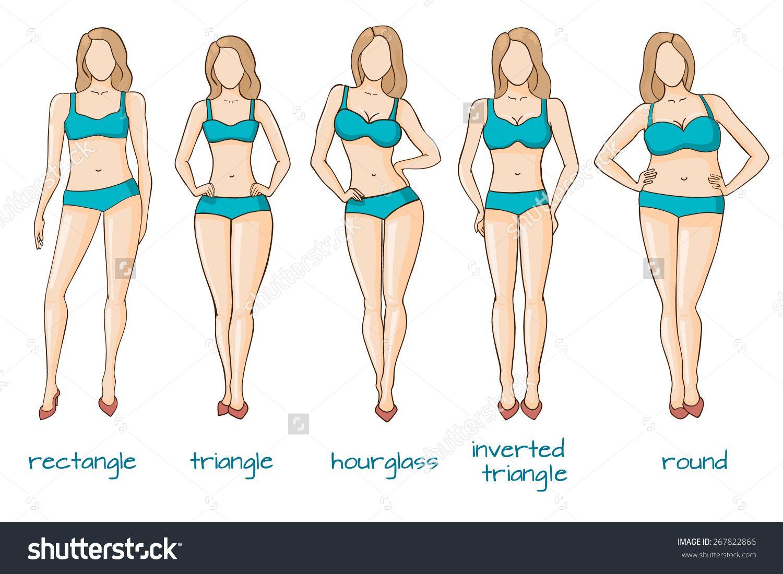 9512f31aabd 1500x1100 Stock Vector Female Body Types Vector Illustration 267822866.jpg