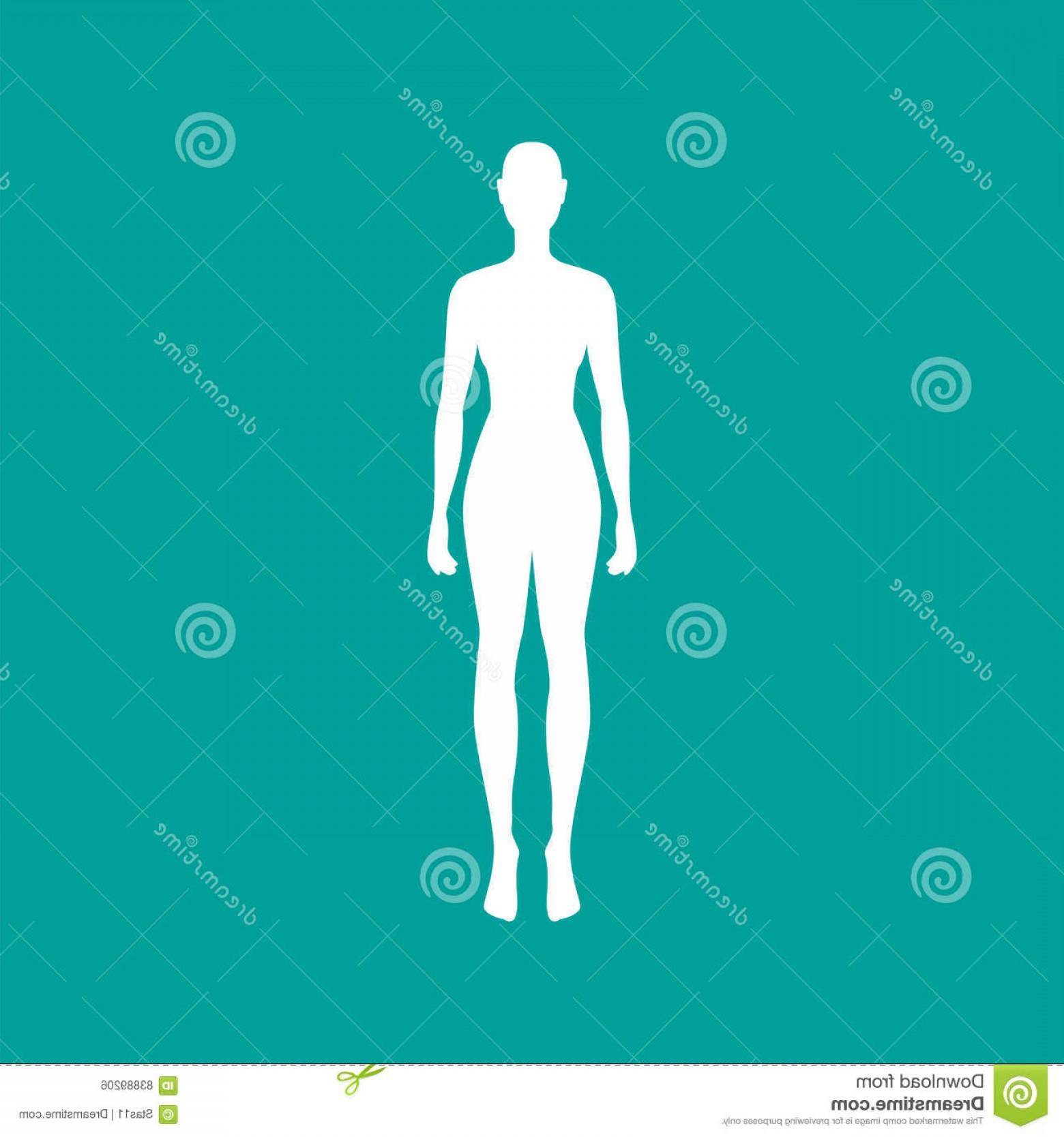 1560x1668 Stock Illustration Woman Body Outline White Vector Illustration