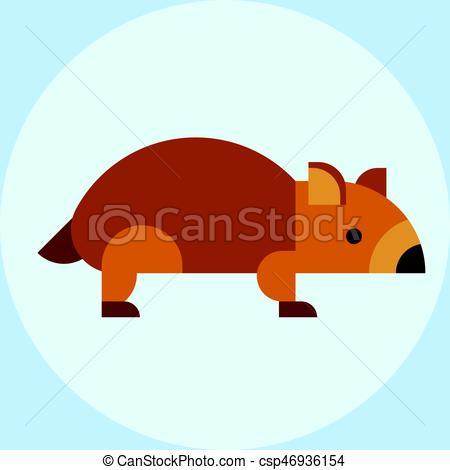 450x470 Wombat National Park Australia Herbivore Fauna Furry Outdoors