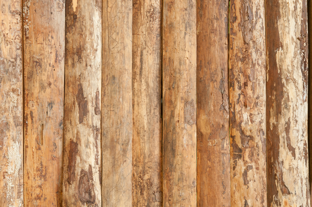 1024x681 Results For Wood Grain Texture Vector Free