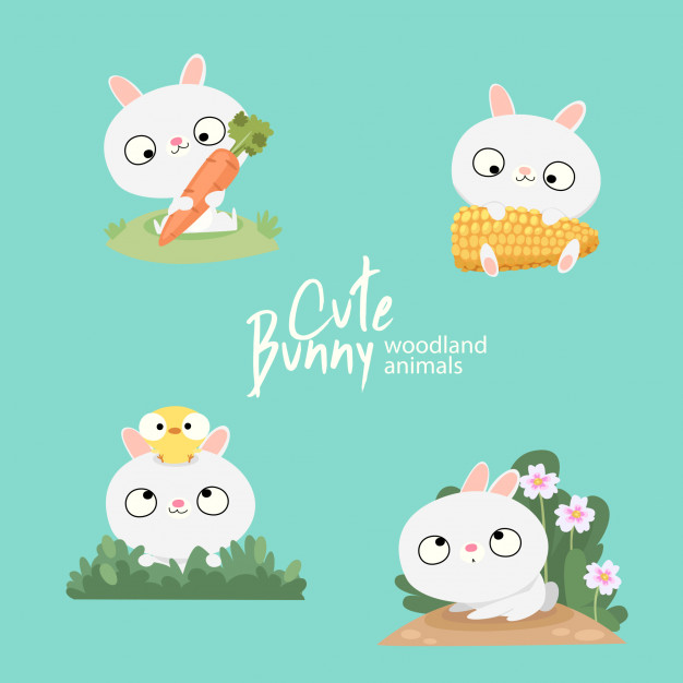 626x626 Cute Bunny Woodland Animals Vector Premium Download
