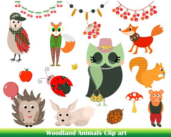 570x456 Premium Woodland Animals Clip Art Cute Animals Vector Animals Etsy