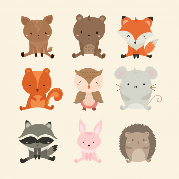 626x626 Set Of Cute Illustration Of Woodland Animals Vector Premium Download