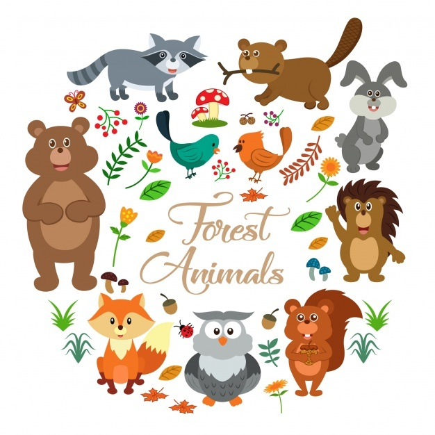 626x626 Woodland Animals Vectors, Photos And Psd Files Free Download