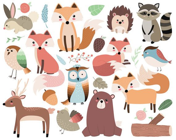 570x456 Animals Vector Art Woodland Forest Animals Clip Art 26 300 Dpi