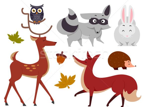 600x433 Animals Woodland Vector Illustration Lenm ( 7234242) Stockfresh