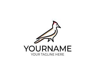 325x260 Woodpecker Logo Design. Bird Pileated Vector Design Designed By
