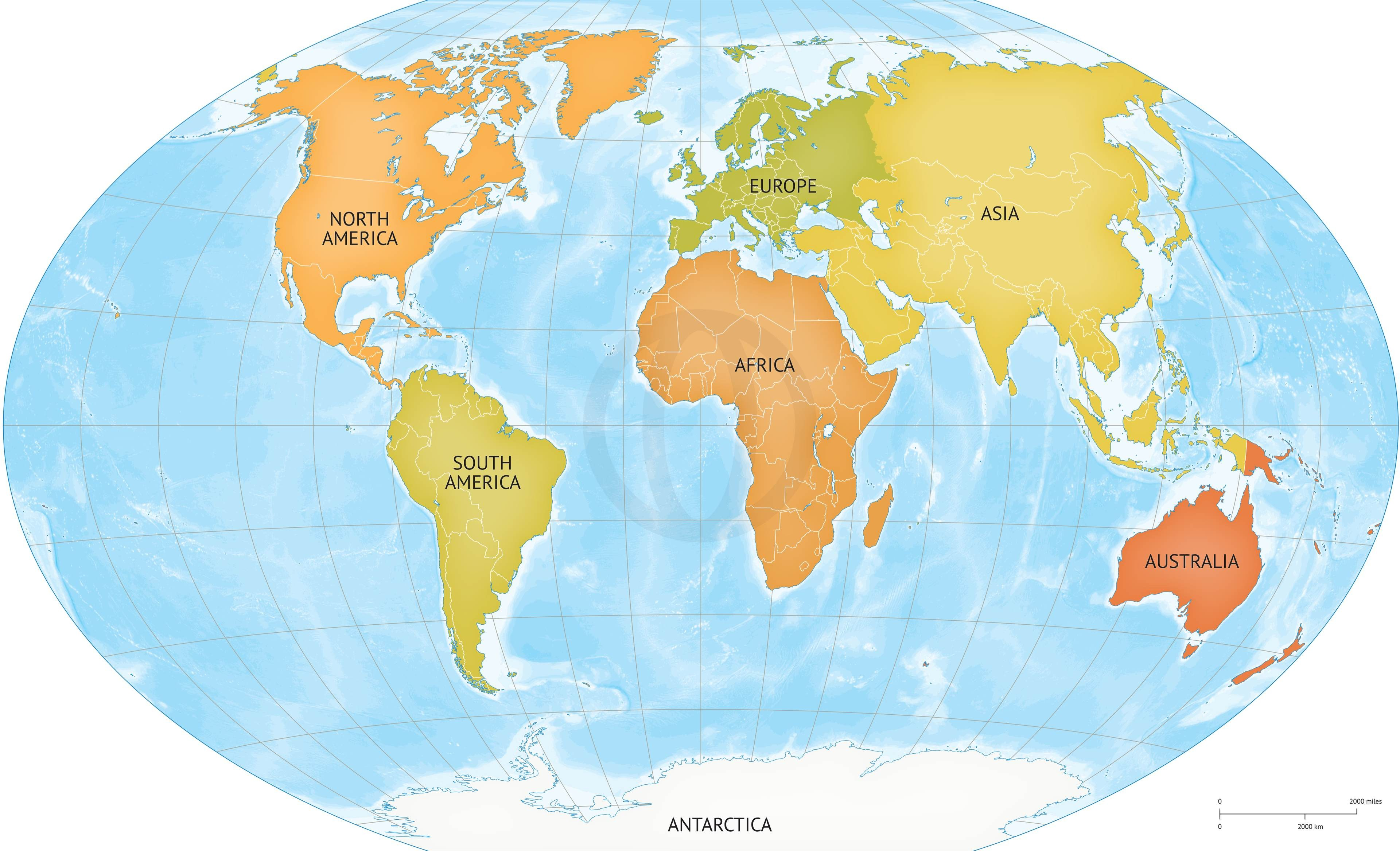 High Resolution World Map With Countries.World Map Outline High Resolution Vector At Getdrawings Com Free