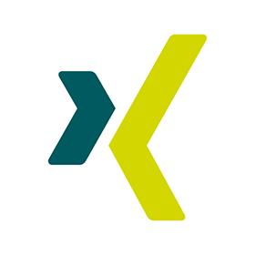 280x280 Xing Logo Vector Free Download