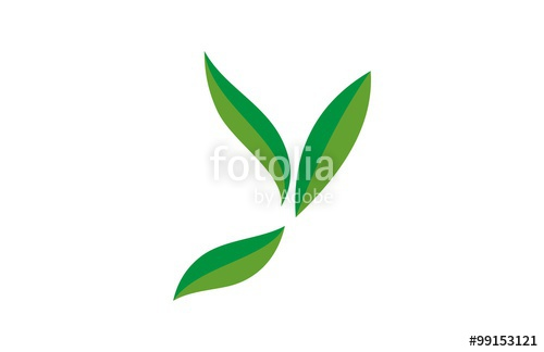 500x324 Green Leaf Letter Y Logo Stock Image And Royalty Free Vector