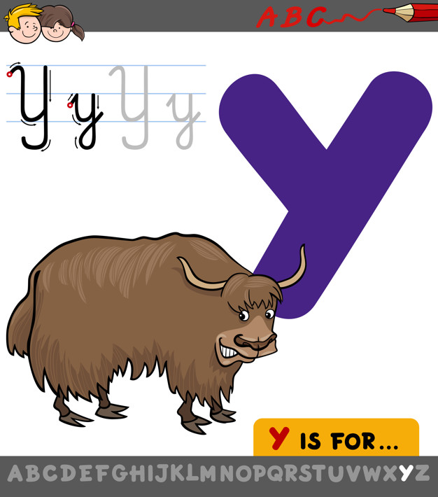 626x710 Letter Y With Cartoon Yak Vector Premium Download
