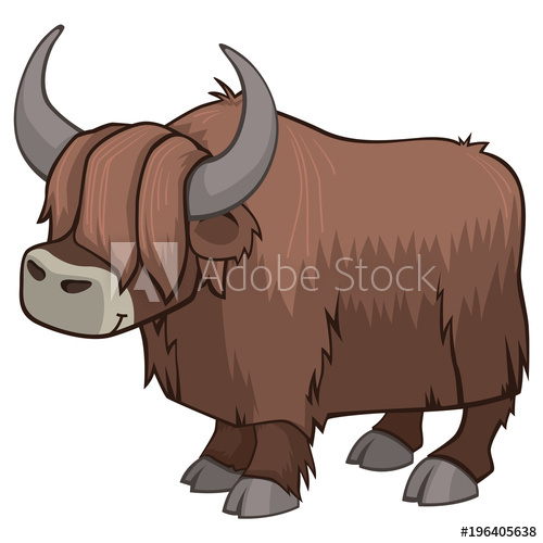 500x500 Cute Hairy Yak Vector Illustration Isolated On White With Big
