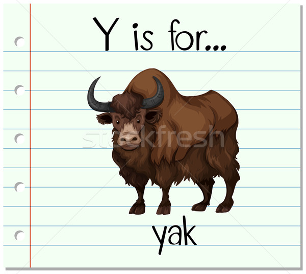 600x536 Flashcard Letter Y Is For Yak Vector Illustration Daniel Cole