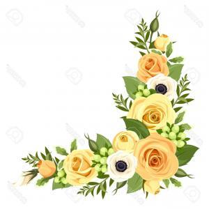 300x300 Photostock Vector Corner With Yellow Roses Vector Illustration