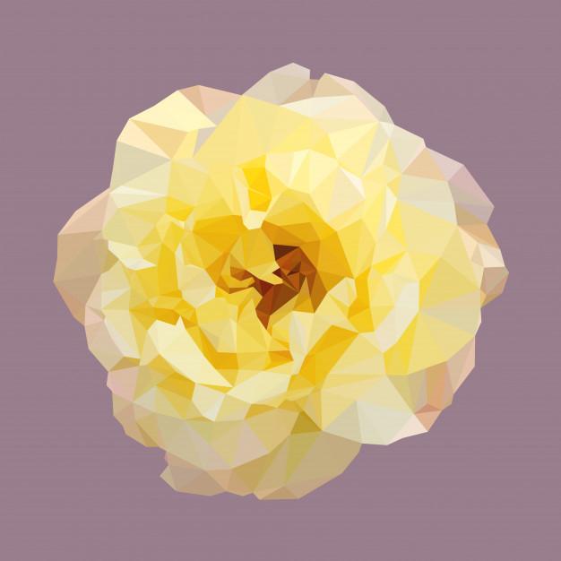 626x626 Polygonal Yellow Rose Vector Premium Download