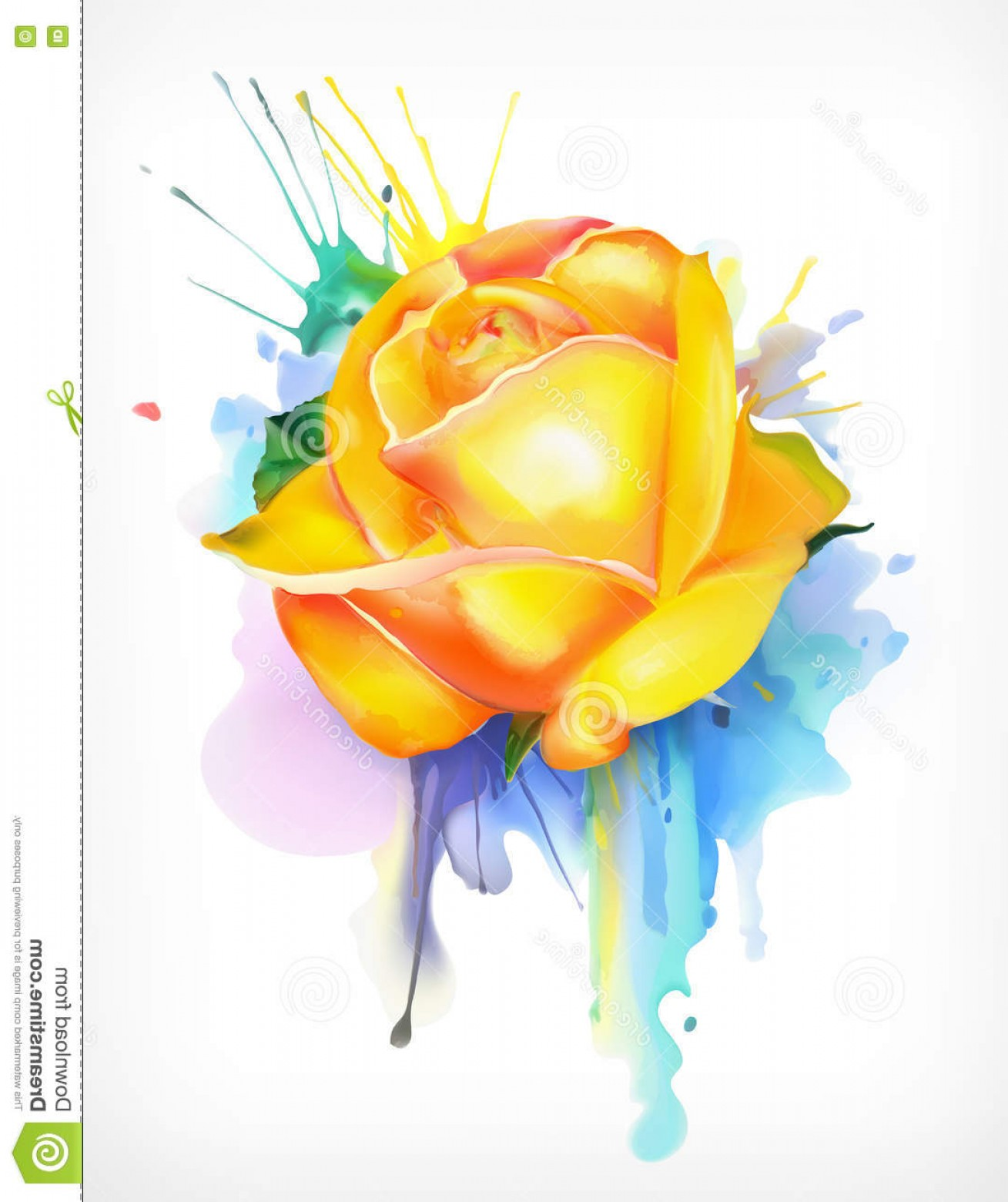 1309x1560 Stock Illustration Watercolor Painting Yellow Rose Vector