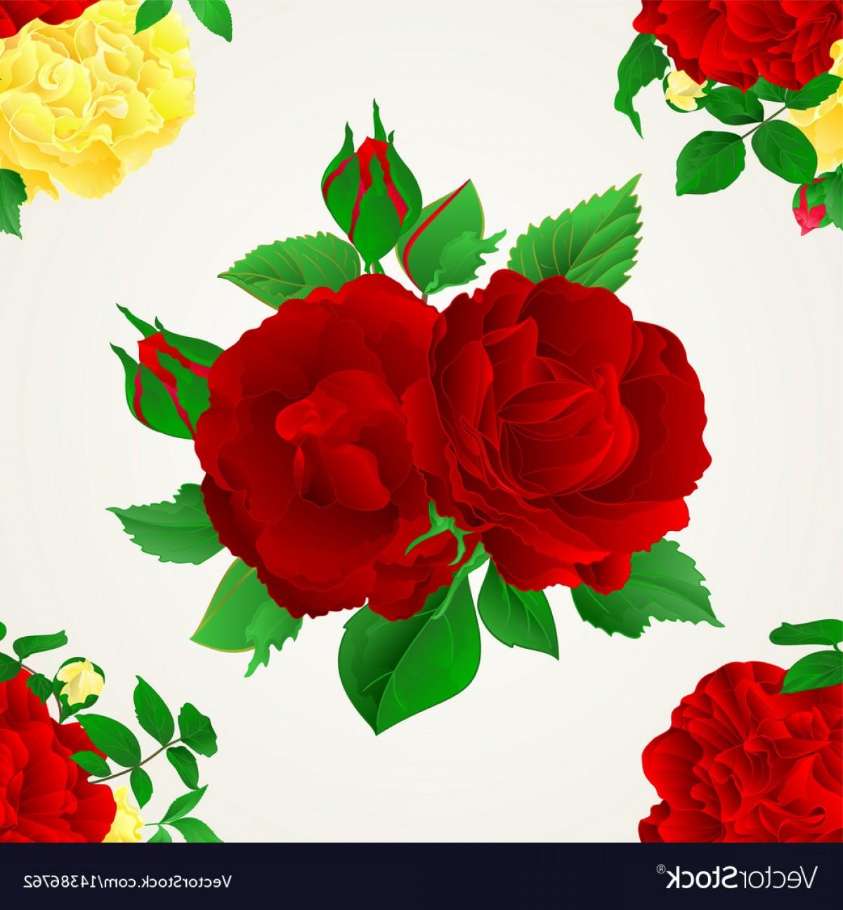 1200x1296 Yellow Rose Vector Arenawp