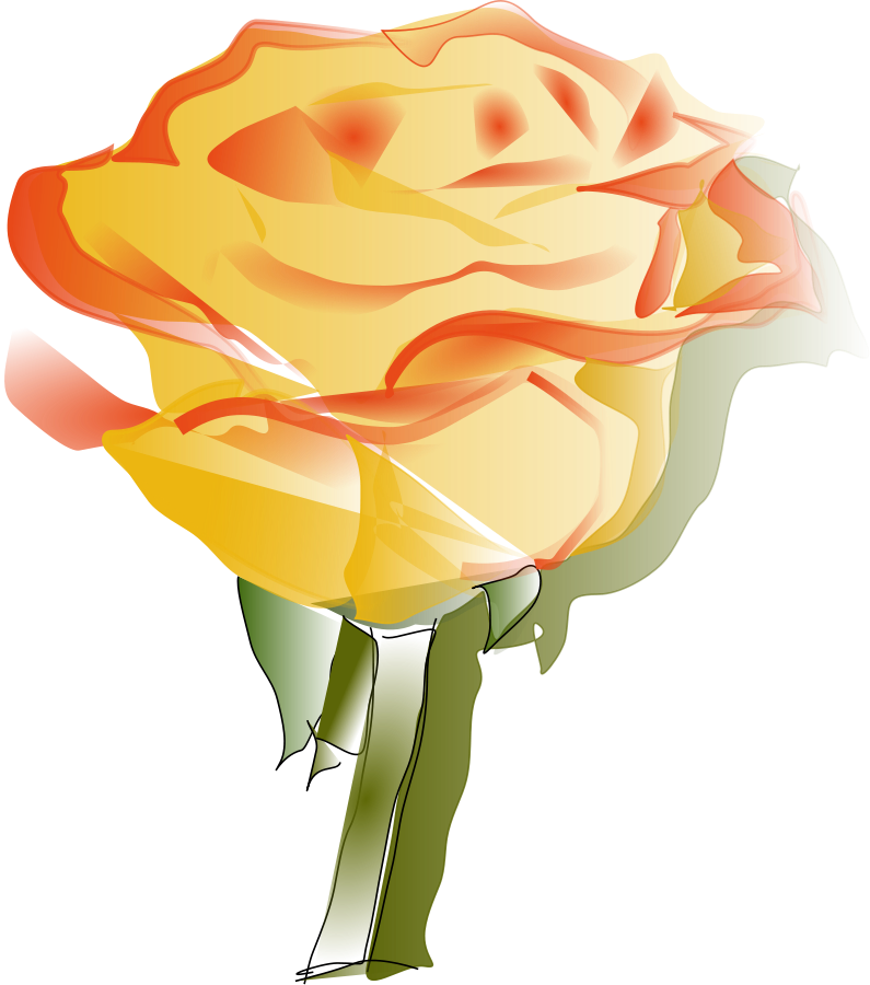 795x900 Yellow Rose Clipart Vector