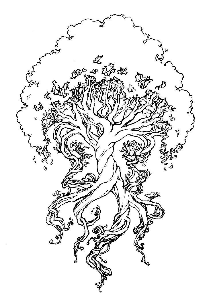 736x1063 Collection Of Yggdrasil Tree Drawing High Quality, Free