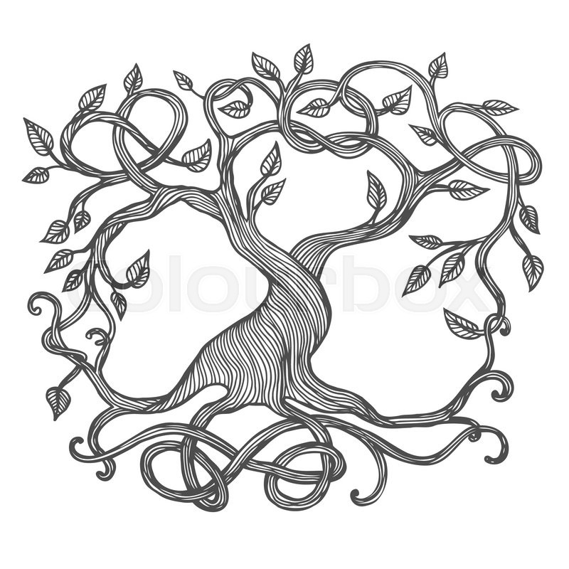 800x800 Celtic Tree Of Life, Illustration Of Yggdrasil Stock Vector