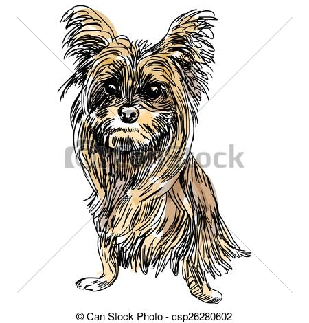 450x470 Yorkie Dog Sketch. An Image Of A Sketch Of A Yorkshire Terrier Dog.