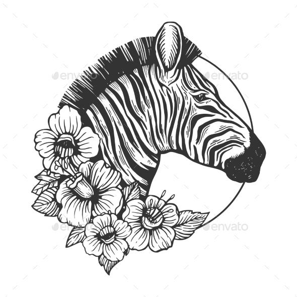 590x590 Zebra Head Animal Engraving Vector By Alexanderpokusay Graphicriver