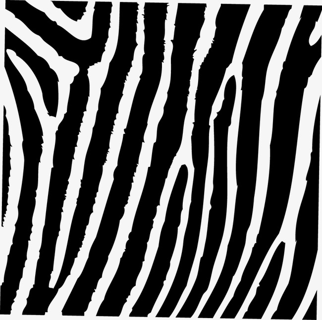 650x646 Vector Zebra Pattern, Pattern Vector, Fashion Zebra Pattern, The