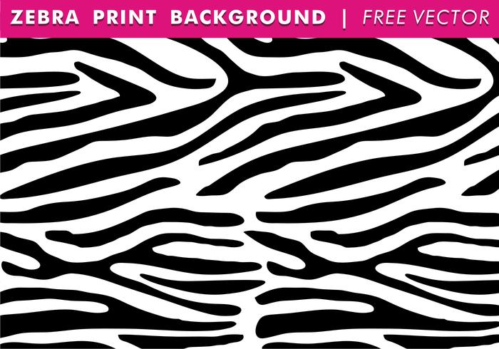 700x490 Zebra Free Vector Art