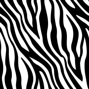 300x300 Zebra Stripes Seamless Pattern Vector Orangiausa