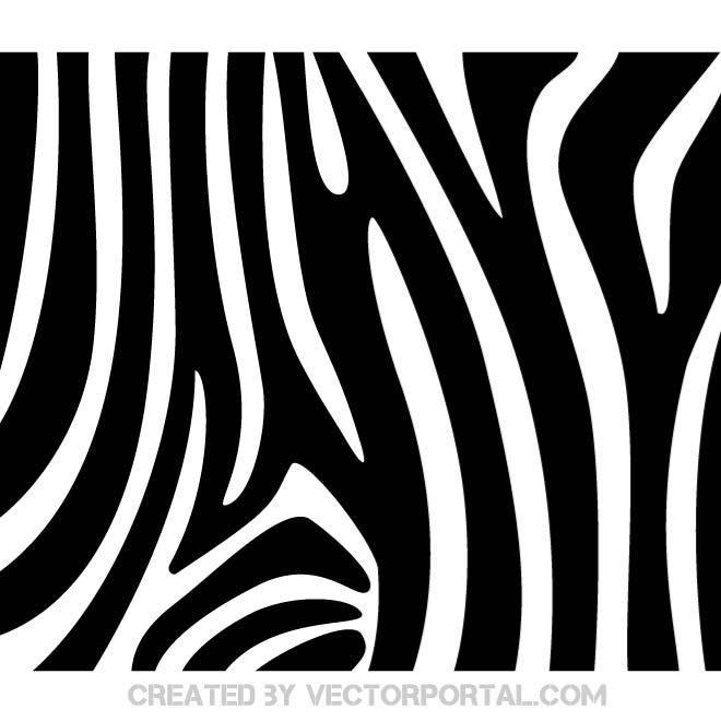 660x660 Zebra Pattern Vector. Art Inspiration Vector